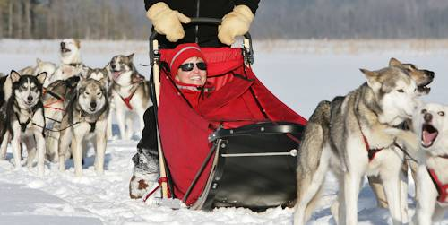 General Information About Our Ely, MN and BWCA Sled Dog Trips